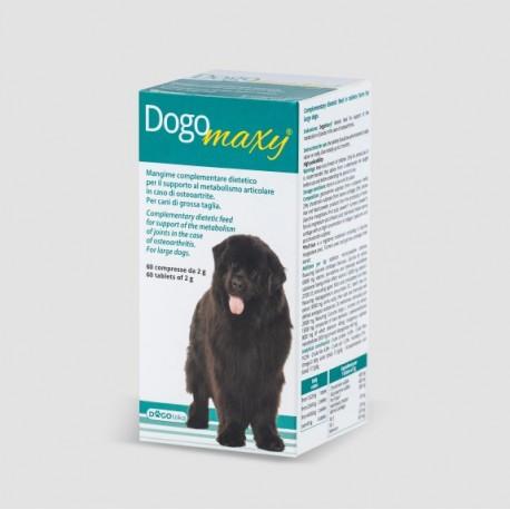 DogoMaxy®